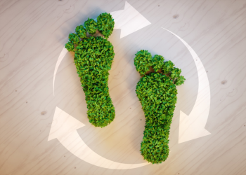 7 Ways to Reduce Your Carbon Footprint at Home